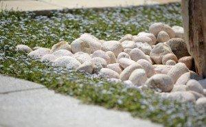 Восточная галька и редкий итальянский камень