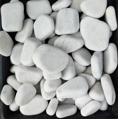 Белая плоская галька